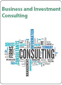 Business & Investment Consulting