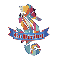 Go Diving Shop