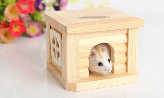 Toys for Hamster