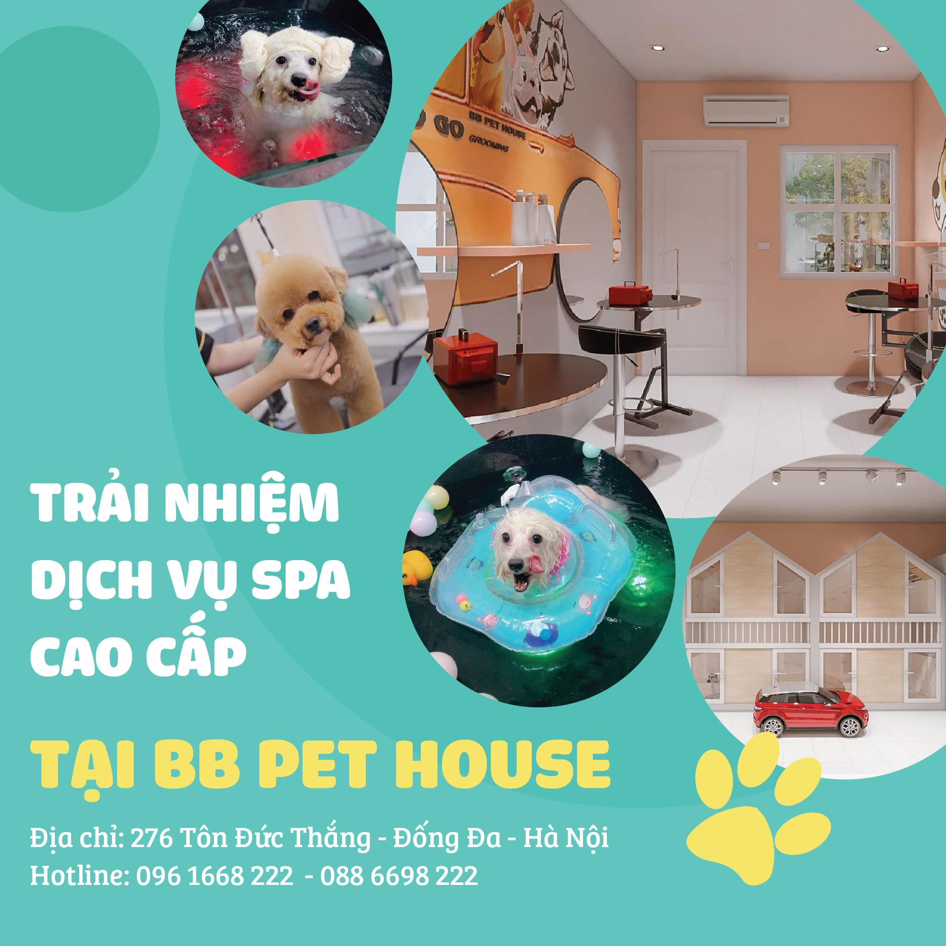 BB PET HOUSE